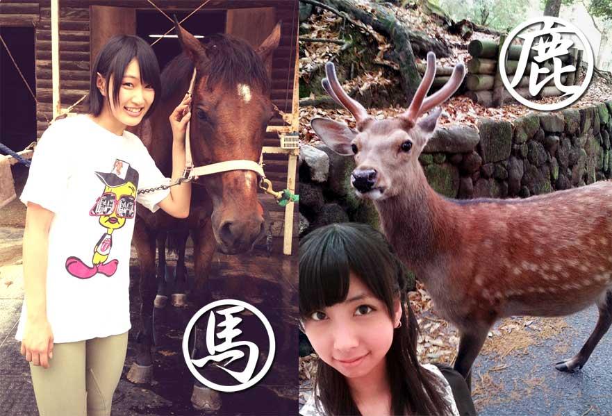 NMB48★4368YouTube動画>11本 ->画像>257枚