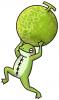 メロンを持ったカエル.jpg