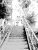 takeya_bu_17.jpg