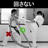 回し蹴り.jpg